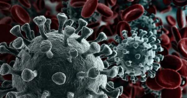 Microscopic view of coronavirus...